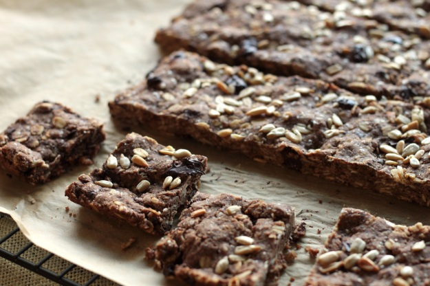 double chocolate mocha oat squares
